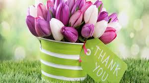 thank you flowers thank you flower wallpaper hd desktop background