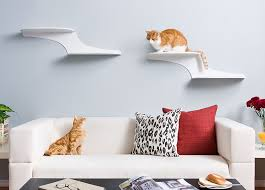 amazon com the refined feline cat cloud cat shelves in white
