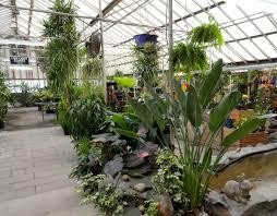 native plant nursery portland oregon plants awesome best plant nursery portland oregon this is a