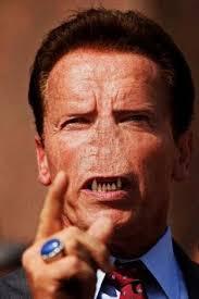 Arnold Schwarzenegger Memes - just arnold arnold schwarzenegger memes and funny pics