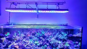 Led Aquarium Lighting Aquarium Led Lighting 2017 U2022orphek