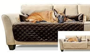 Dog Blankets For Sofa by Dog Beds U0026 Furniture Deals U0026 Coupons Groupon
