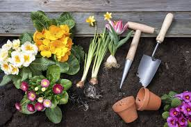 Gardening Gifts For Mother U0027s by 100 Gardening Pictures Here U0027s How To Make Good