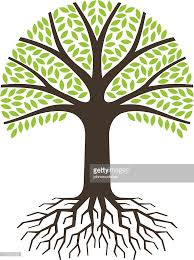simple tree with roots vector getty images