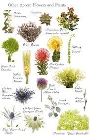 33 best flower names images on pinterest floral arrangements