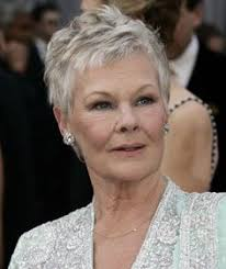 how to get judi dench hairstyle min hairstyles for judi dench hairstyle this pixie like photo of