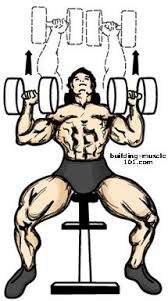 Incline Bench Dumbbell Rows Incline Bench Press Coached By Christian Thibaudeau Workout