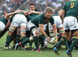 south africa rugby jpg 4016 2966 rugby pinterest rugby