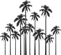 black and white tropical palm trees stickers by