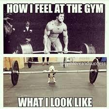 Funny Lifting Memes - funny gym memes happy shappy india s own social media portal