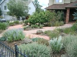 xeriscape ideas front yard landscaping ideas easy front yard