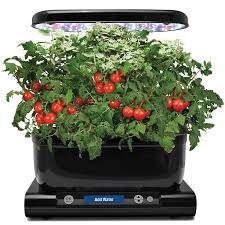 Gifts For Vegetable Gardeners by Patch Holiday Gift Guide Essential Gifts For Gardeners Dealtown