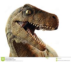 dinosaur closeup editorial stock photo image 22779278