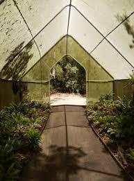 seed collection of australian native plants hunter region botanic gardens heatherbrae nsw theme gardens