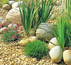 Best Rock Gardens Small Rock Garden Ideas Photogrid Info