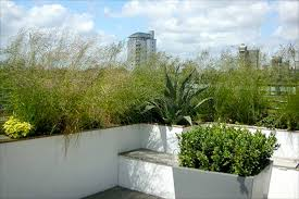 Rooftop Garden Design Linear Roof Garden Landscape By Design Gardens And Champsbahrain Com