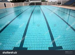 lanes in a competition olympic size swimming pool olympic