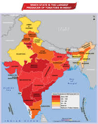 Maps Of India by Which State Is The Largest Producer Of Tomatoes In India