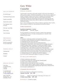 Sample Resume Of Social Worker by Volunteer Work Resume Samples Visualcv Resume Samples Database