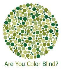 Color Blind Picture Test Color Blind Vision App Mobit Solutions