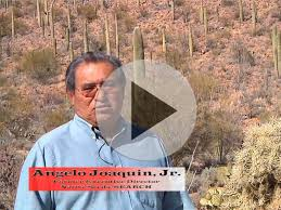 native plants in arizona traditional foods and medicine desert harvest of the tohono o