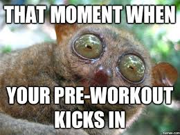 Pre Workout Meme - shareology on twitter funny pre workout memes https t co