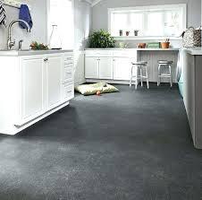 Best Vinyl Flooring For Kitchen Vinyl Kitchen Flooring Amazing Best Vinyl Flooring Kitchen Ideas