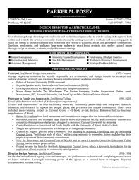 How To Write An Artist Resume Director Resume