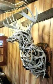 deer antler mount ideas deer antler deer mount decorating apps