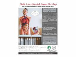 Anatomy And Physiology Class Anatomy And Physiology Summer Course At Best Anatomy Learn
