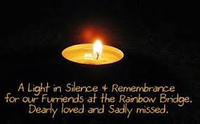 gratefulness org light a candle healingpurrspawty candle groups on lightingacandle org