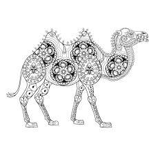 therapeutic camel coloring page kidspressmagazine com