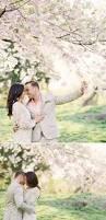 159 best blossom photoshoot images on pinterest cherries cherry