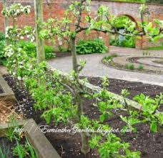 backyard vegetable garden ideas 18 appealing vegetable garden