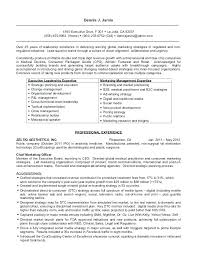 executive resume templates word ceo resume template word paso evolist co