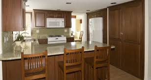 100 kitchen cabinets chicago interior creative contempo