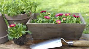 How To Build A Planter by Homelife How To Build A Planter Box