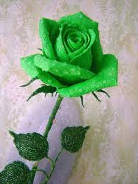 green roses top 10 most beautiful green roses