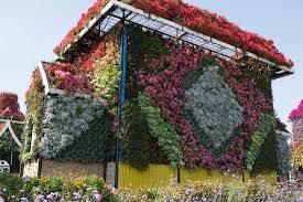 Nice Flowers Nice Flowers On The House Picture Of Dubai Miracle Garden Dubai