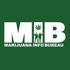 information bureau marijuana treasure hunt is coming dopechef media