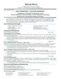 exle of sales resume here are resume for sales position goodfellowafb us