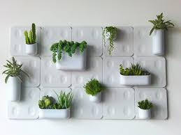wall garden indoor designs that make the room look beautiful