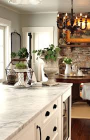 Kitchen Cabinet Trim Ideas by Cabinets Trim U0026 Ceiling White Dove Wall Color Is Gray Owl Both