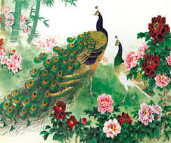 colourful peacock paint full wall mural large print decal