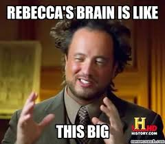 Rebecca Meme - brain is like
