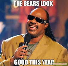 Bears Meme - the bears look good this year meme stevie wonder 61461 page 5