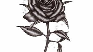 rose with thorns drawing rose tattoo drawings and designs media