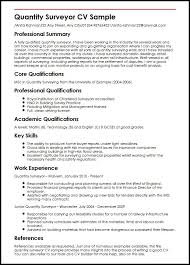 Good Summary Of Qualifications For Resume Examples by Quantity Surveyor Cv Sample Myperfectcv