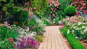 raised flower beds wallpaper