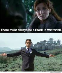 Tony Stark Meme - there must always be a stark in winterfell jpg